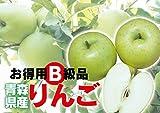 わけあり 青森県産 青りんご B級品 王林 10kg ダンボール詰