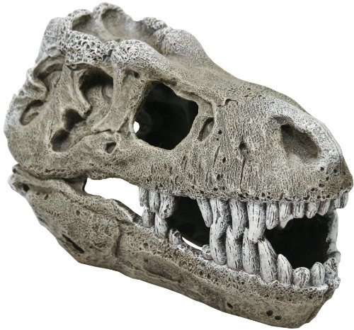 Exotic Environments T-Rex Skull Aquarium Ornament, Large, 10-Inch by 6-Inch by 6-Inch