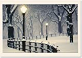 Peaceful Night Holiday Boxed Cards (Christmas Cards, Holiday Cards, Greeting Cards) (Deluxe Holiday Cards)