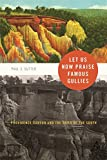 img - for Let Us Now Praise Famous Gullies: Providence Canyon and the Soils of the South (Environmental History and the American South Ser.) book / textbook / text book