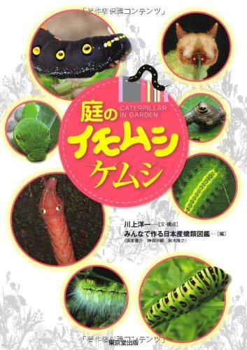 庭のイモムシケムシ