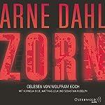 Zorn | Arne Dahl