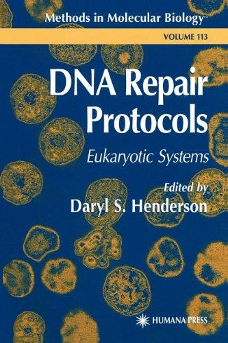 Dna Repair Protocols (Methods In Molecular Biology)