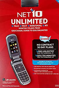 LG 220C Flip Cell Phone (TracFone)