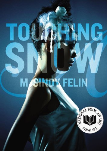 Touching Snow by M. Sindy Felin