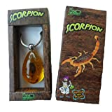 Scorpion Keychain
