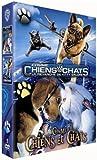 Comme-Chiens-et-Chats---2.-Revanche-de-Kitty-Galore-(La).-DVD