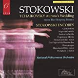 Stokowski conducts the National Philharmonic Orchestra