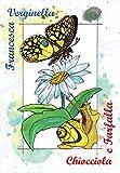 Chiocciola e Farfalla
