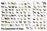 めざせパズルの達人 1000ピース 犬の系統図 11-372