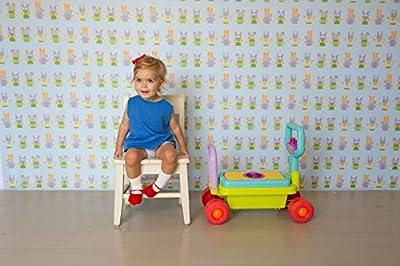 Taf Toys 4 in 1 Developmental Walker by Taf Toys