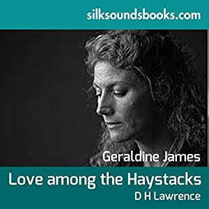 Love Among the Haystacks and Other Stories Audiobook
