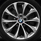 Original BMW Alufelge 5er F10-F11-LCI Turbinenstyling 452 in 18 Zoll