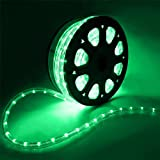 Flexible 50' LED Crystal Clear PVC Tubing Rope Light Indoor/Outdoor Boat Decorative Party Christmas Holiday Business Restaurant Light Kit 110V/60Hz Customizable Length (Green)