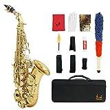 LADE セット Bb ソプラノサックス サックス ブラス製 吹奏楽 練習用 本番にも 使い勝手はあなた次第! 彫刻入り 管楽器