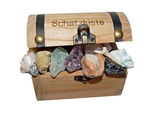 Schatzkiste-gefllt-mit-15-ausgesuchten-Mineralien-Versteinerungen-ideal-fr-jeden-Schatzsucher-ob-klein-oder-gro4087