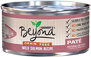Purina Beyond Grain Free Wild Salmon Recipe Natural Cat Food, 12/3oz cans