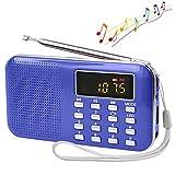 Lonve Mini Portable FM/AM Radio MP3 Player Media Speaker LCD Display Support Micro TF Card USB Disk with Emergency Flashlight
