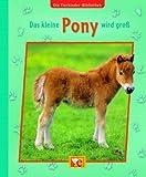 Die Tierkinder-Bibliothek 04 - Das kleine Pony wird groß - Sandra Grimm