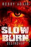Slow Burn: Destroyer, Book 3 (Slow Burn Zombie Apocalypse Series)