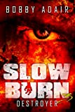 img - for Slow Burn: Destroyer, Book 3 book / textbook / text book