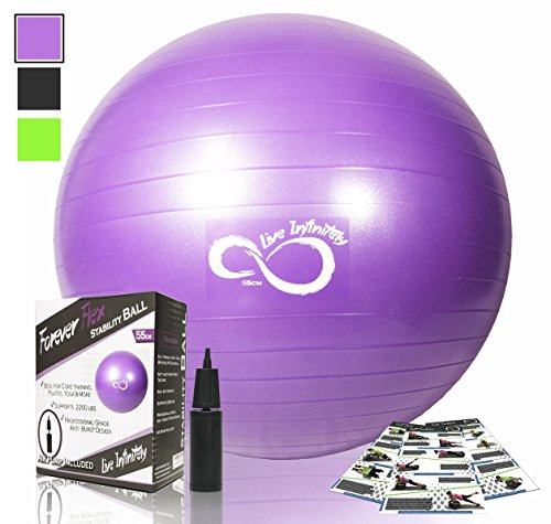 Exercise Ball -Professional Grade Anti Burst Tested with Hand Pump- Supports 2200lbs- Includes Workout Guide Access- 55cm/65cm/75cm/85cm Balance Balls (Purple, 65 cm)
