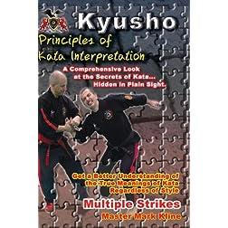 Principles of Kata Interpretation -