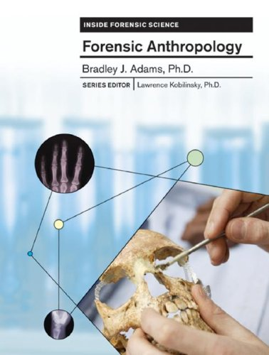 forensic anthropology thesis