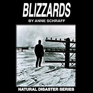 Blizzards Audiobook