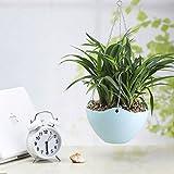 Hook Hanging Chain Flower Pot Basket Planter for Garden Home Decor (Blue)