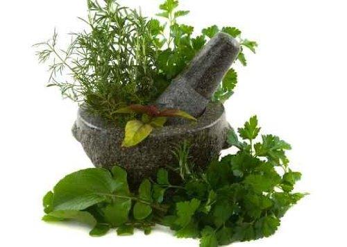 Healing Herbs in a Granite Mortar and Pestle - 24