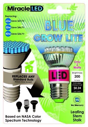 Miracle Led 603040 Led Blue Grow Lite, Indoor Gardening Bulb Color: Blue Style: 2-Watt Outdoor/Garden/Yard Maintenance (Patio & Lawn Upkeep)