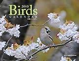 野鳥カレンダー 2010