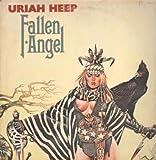 Fallen Angel LP (Vinyl Album) UK Bronze 1978