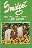 img - for Smidget : The Smallest Horse in the World book / textbook / text book