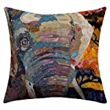 DENY Designs Elizabeth St. Hilaire Nelson Elephant Outdoor Throw Pillow, 16 by 16-Inch
