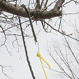 High Reach Rope Chain Saw