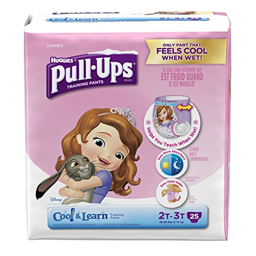 pull-ups-cool-and-learn-training-pants-for-girls-2t-3t-25-count