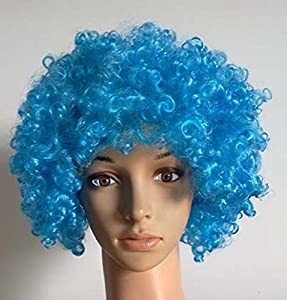 BLISS PRO'S Thing 1 Thing 2, Dr. Seuss Cat In The Hat Tight Curly Afro Wig Child