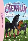 Mes amis les chevaux, tome 2 : La grande compétition