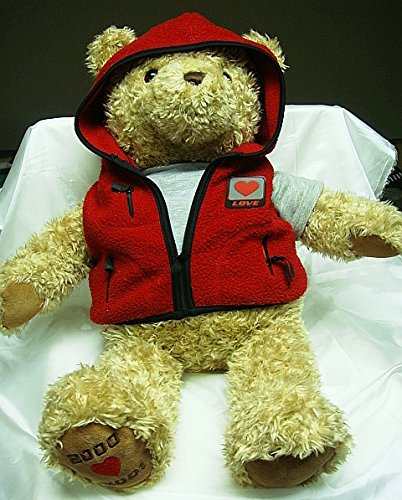 "Gund 25"" Wish Bear - Cheer Bear 2000 - 2001 Edition"