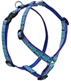 Lupine 3/4-inch Rain Song 14-24 Inch Roman Harness for Small to Medium Dogs