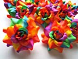 (24) Silk Rainbow Roses Flower Head – 1.75″ – Artificial Flowers Heads Fabric Floral Supplies Wholesale Lot for Wedding Flowers Accessories Make Bridal Hair Clips Headbands Dress