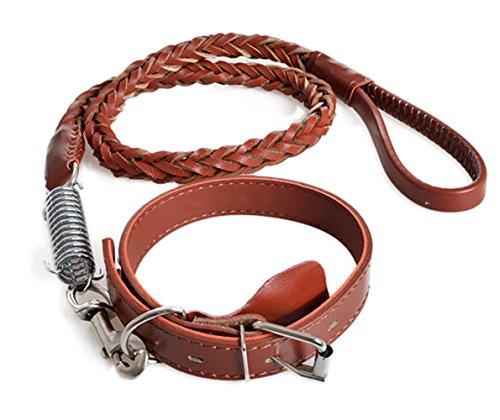 Collari - cuoio intrecciato guinzaglio del cane (marrone)