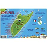 Cozumel Dive Map & Reef Creatures Guide Franko Maps Laminated Fish Card
