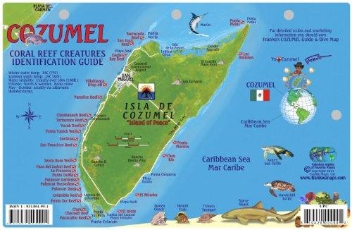 Laminated card for cozumel dive sites - Cozumel dive sites ...