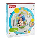 Fisher-Price Fisher Price Discover 'N Grow Open Top Take Along Swing
