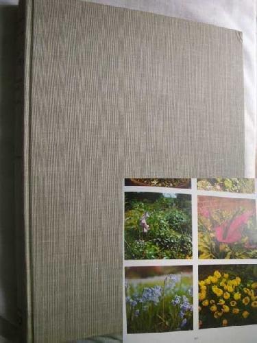 diccionario-ilustrado-en-color-de-plantas-de-jardin-con-plantas-de-interior-y-de-invernadero