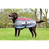 "Weatherbeeta Parka 1200D Dog Coat (24"", Grey Stripes)"