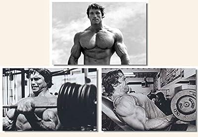 Unknown Travel Arnold Schwarzenegger - 3 Piece Bodybuilding Silk Poster Set 24x36 inches